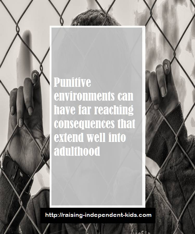 punitive environments and kids
