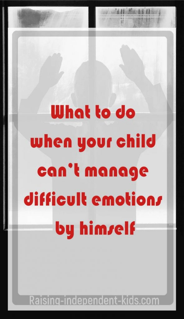Teach Basics of Emotional Regulation to Kids