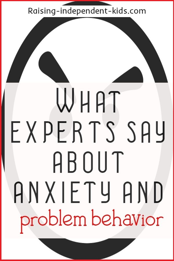 What experts say about anxiety and problem behavior